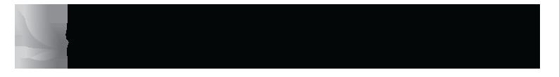 ADA_logo_1-1